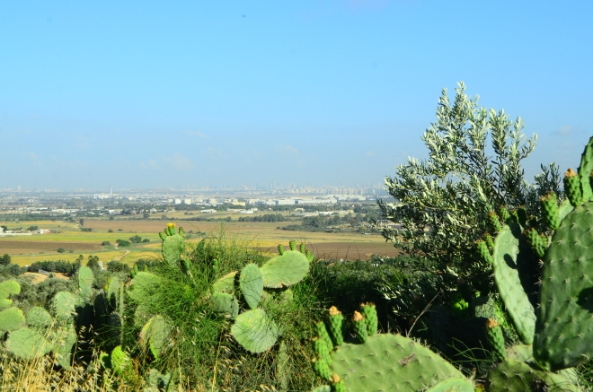 Tel Aviv Metropolitan Area as seen from Tel Hadid