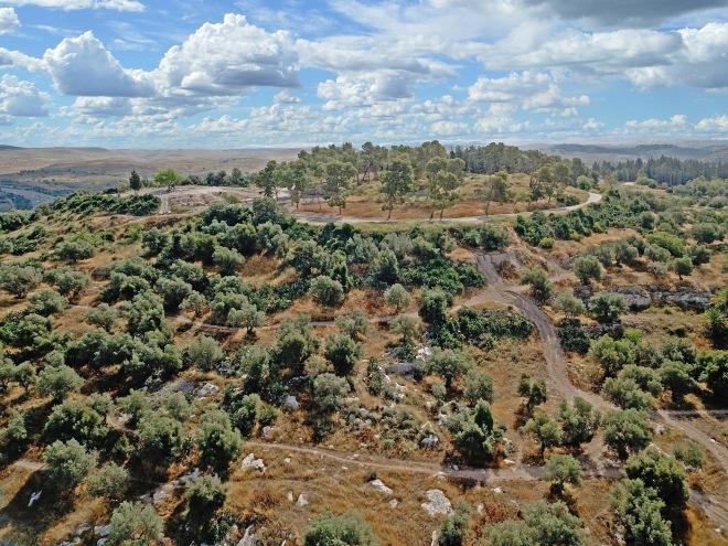 תל חדיד - מבט לצפון-מזרח; צילום: עומר זאבי-ברגר